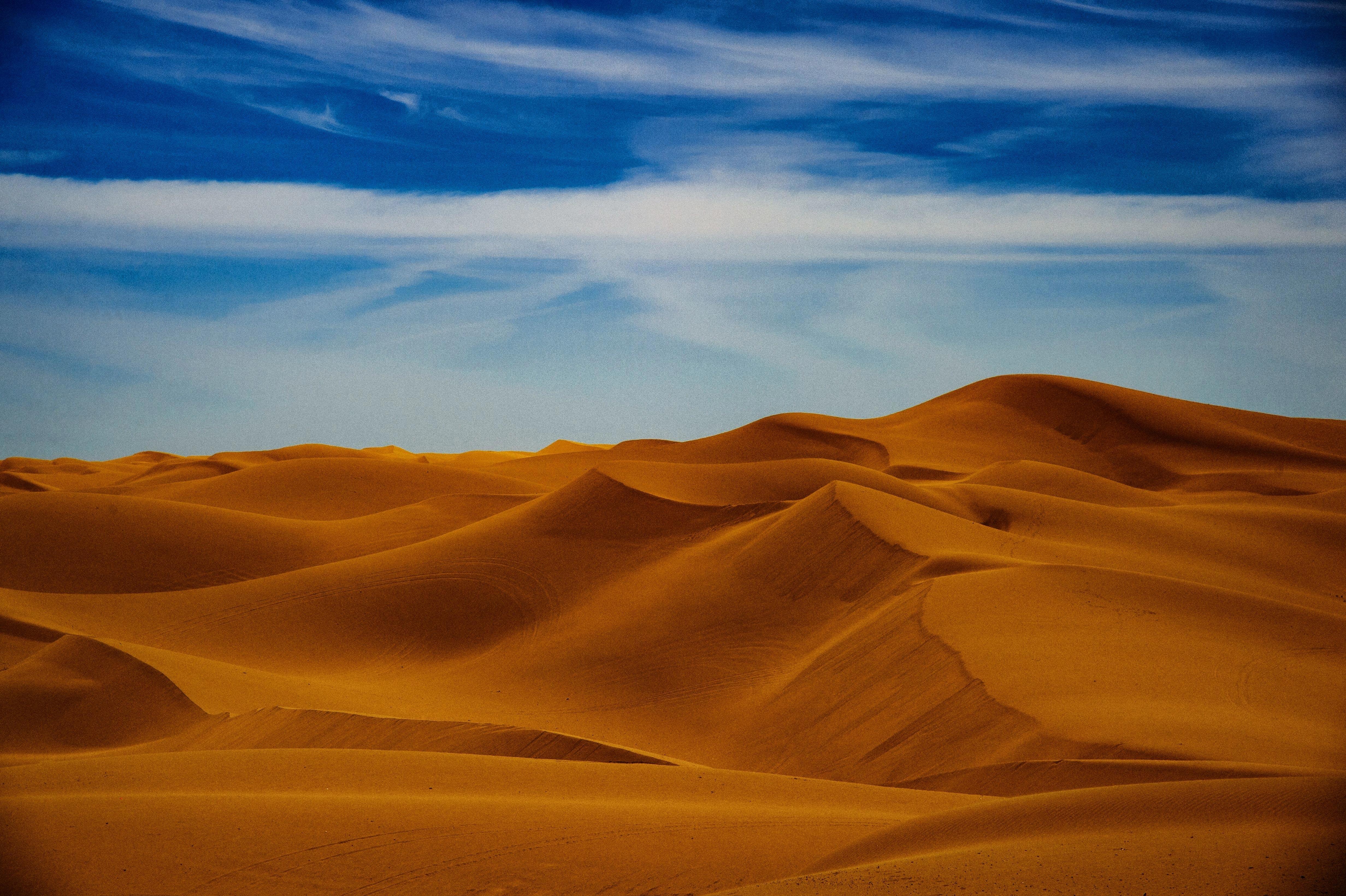 Sunny Day In Desert 4K Wallpaper, HD Nature 4K Wallpapers ...