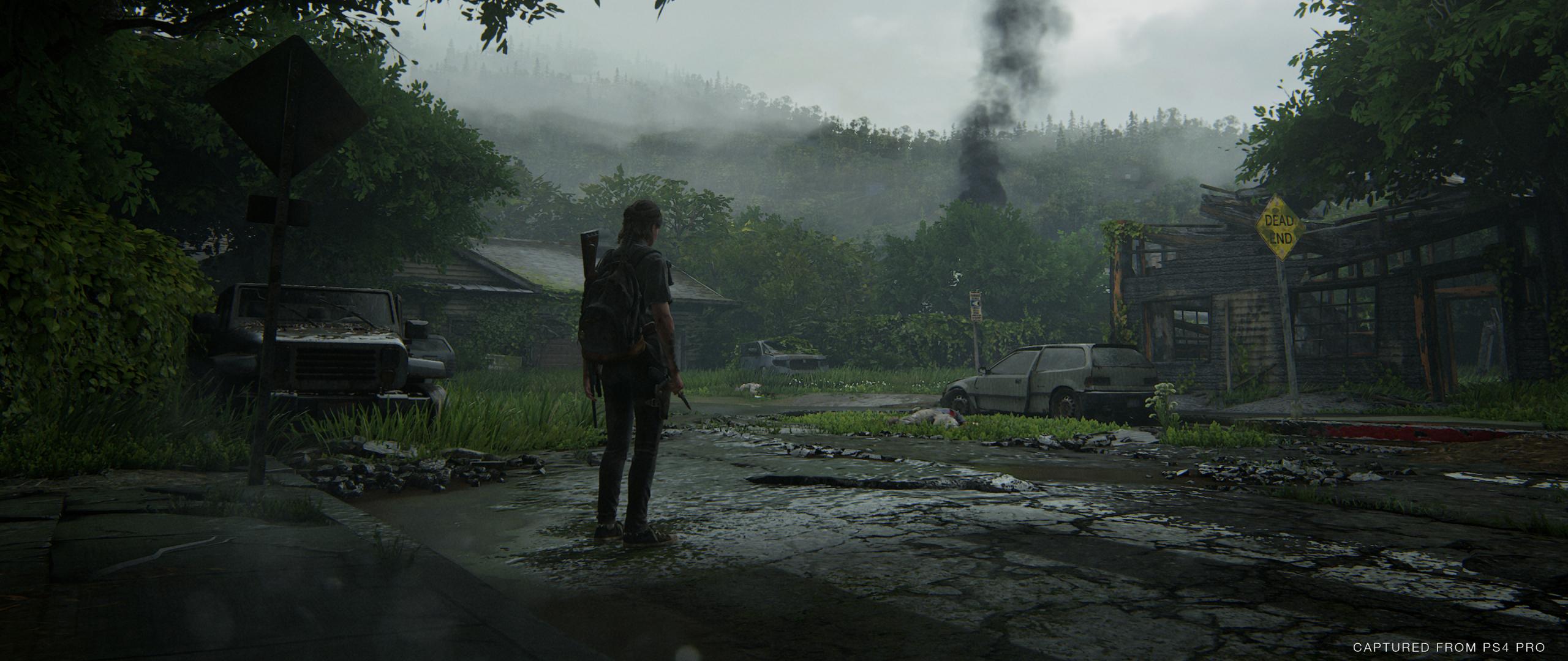 2560x1080 The Last Of Us Part Ii 2560x1080 Resolution Wallpaper