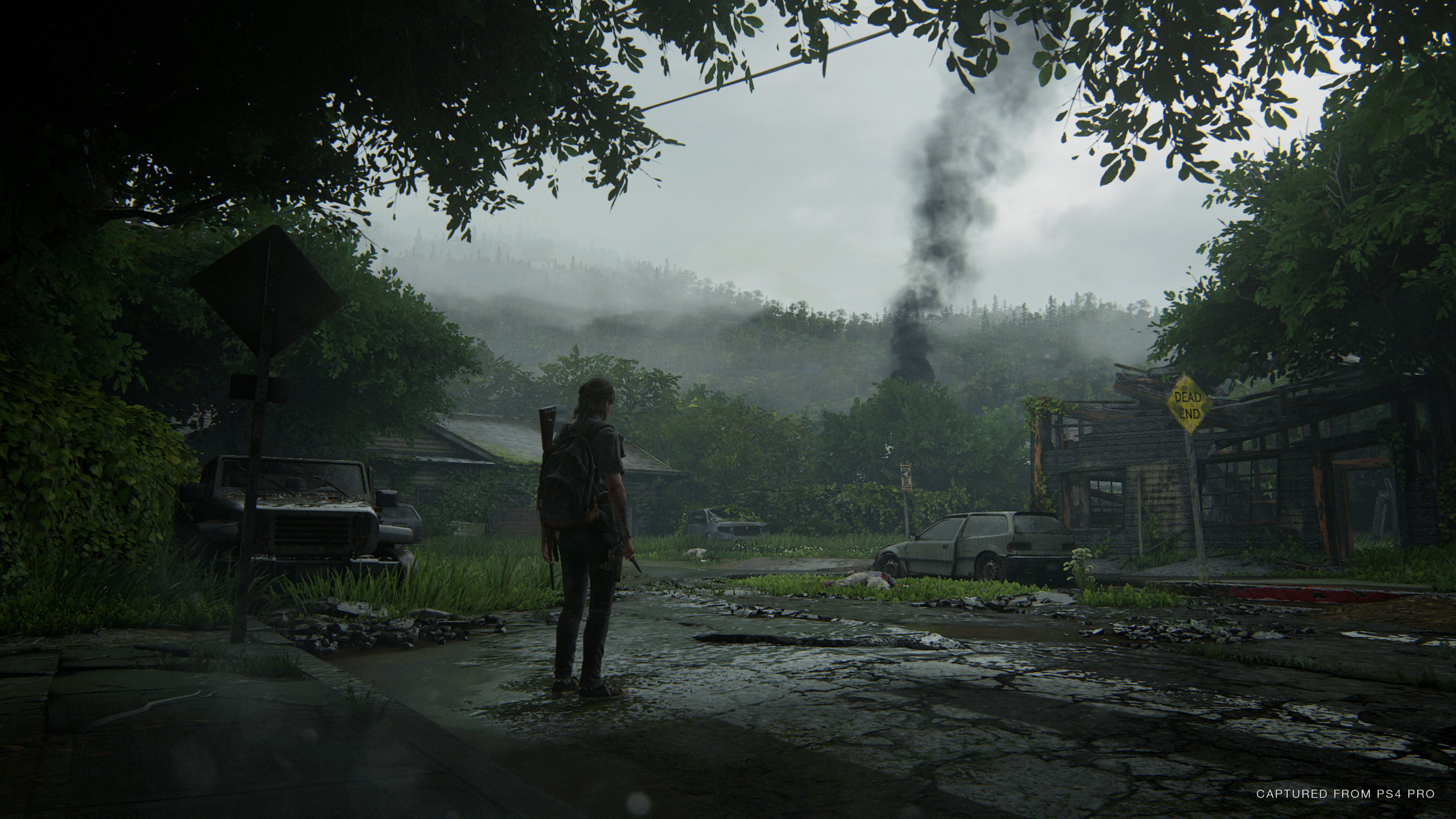 2560x1440 The Last Of Us Part Ii 1440p Resolution Wallpaper Hd