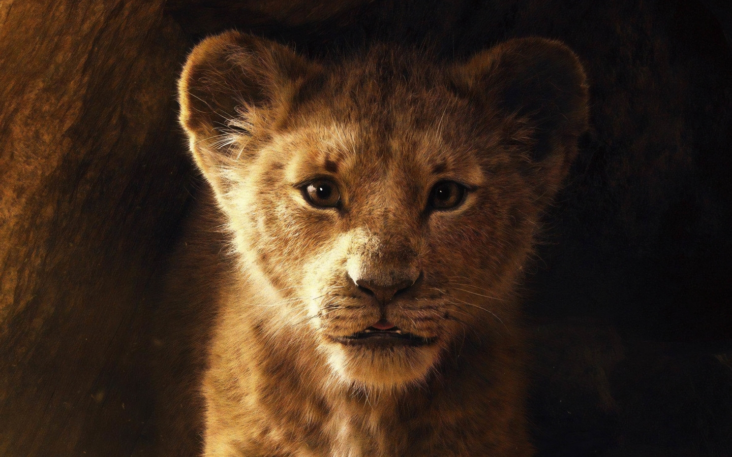 Movie Poster 2019: Download The Lion King 2019 Movie Poster 1600x1200