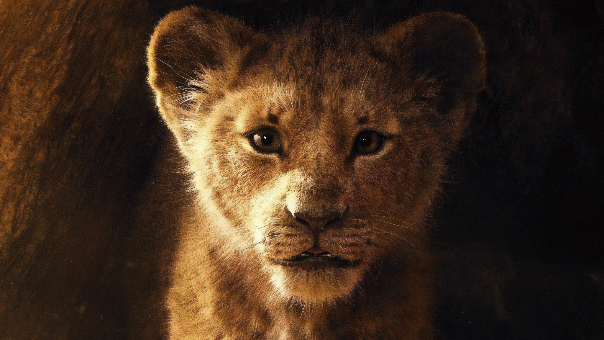 Download The Lion King 2019 Movie Poster 800x600