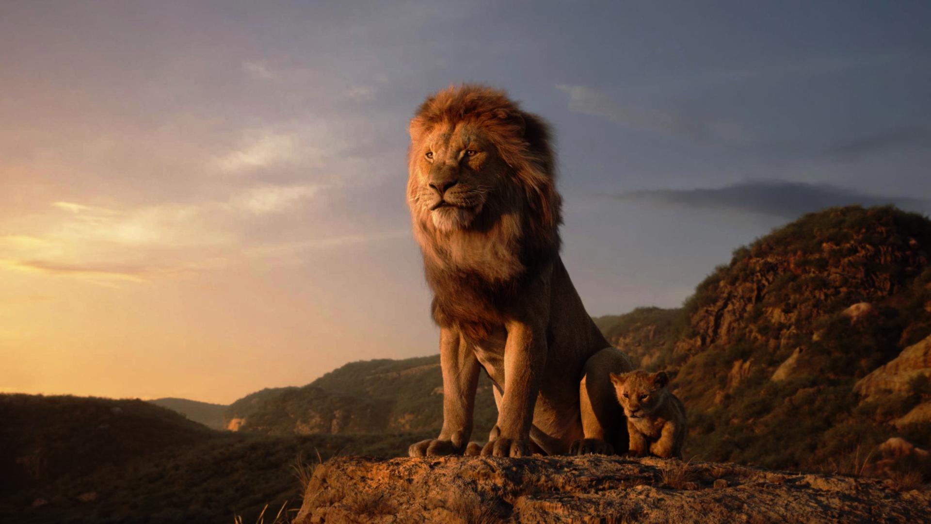 1920x1080 The Lion King 1080p Laptop Full Hd Wallpaper Hd Movies