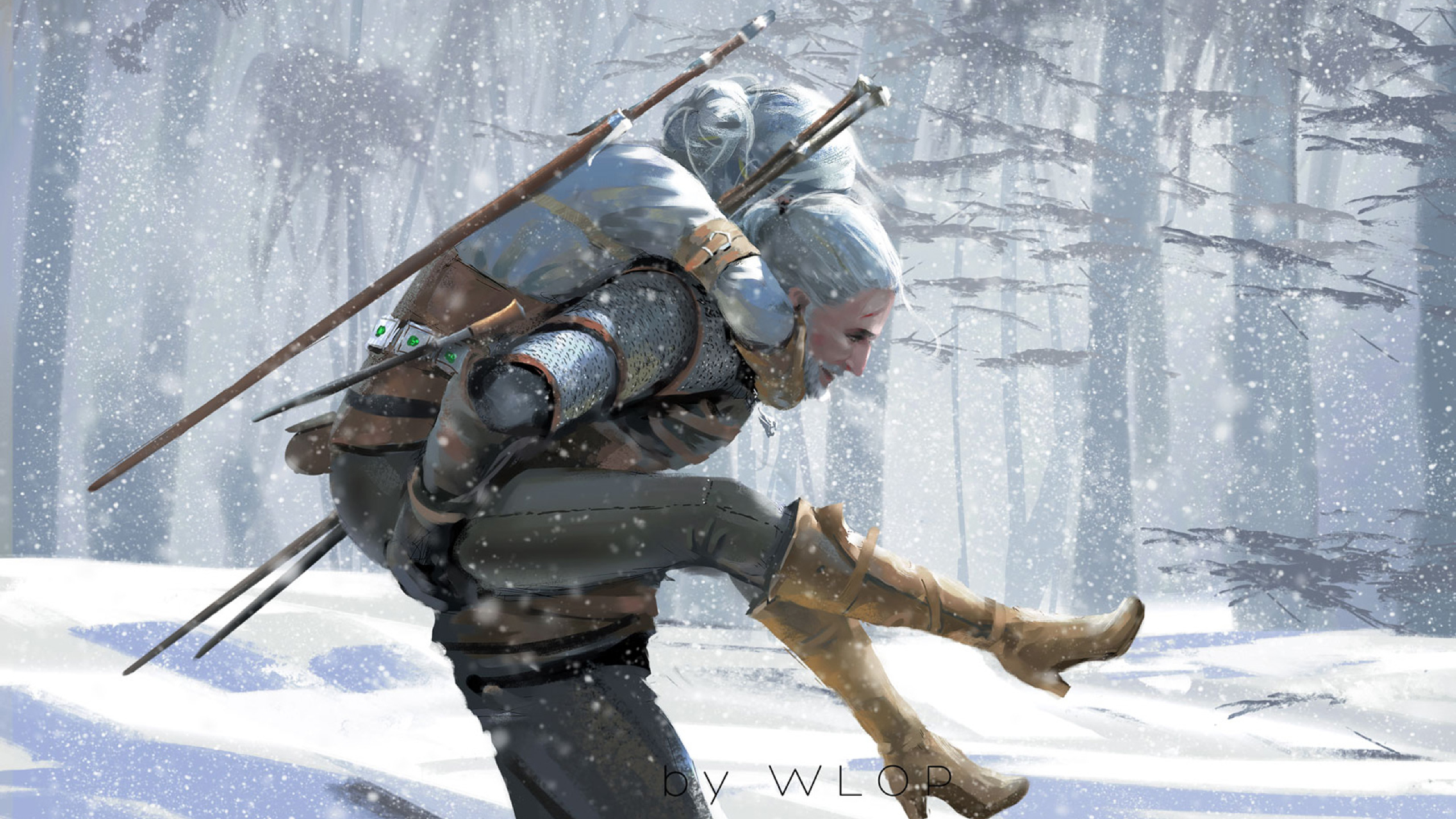 2560x1440 The Witcher 3 Wild Hunt Artwork 1440p Resolution