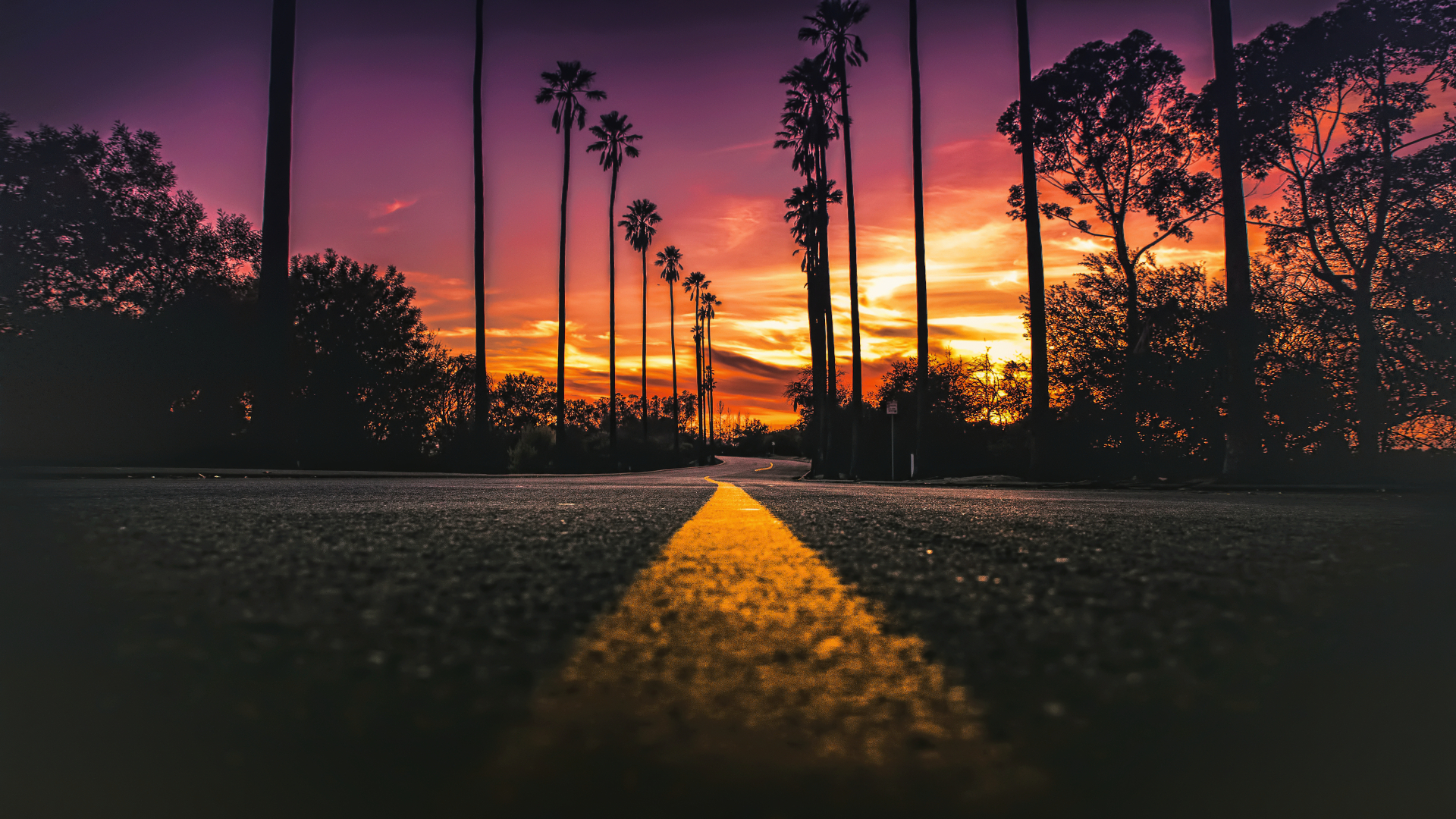 Download Usa California Road Sunlight Street View 360x640 Resolution