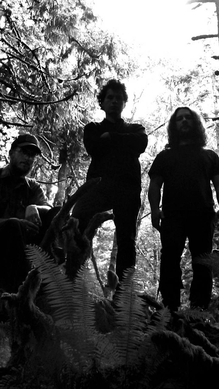 720x1280 Wolves In The Throne Room Forest Trees Moto G X Xperia