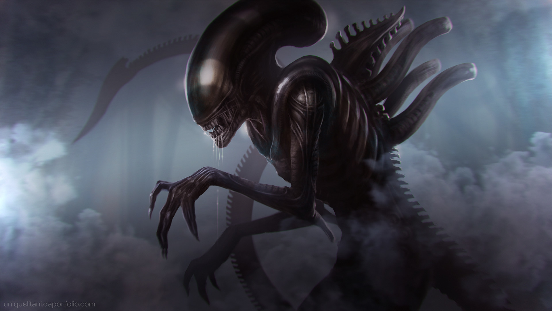 Xenomorph Queen Wallpaper Hd Fantasy 4k Wallpapers Images Photos And Background