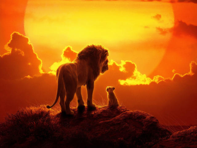 The Lion King 2019 Movie Wallpaper Hd Movies 4k
