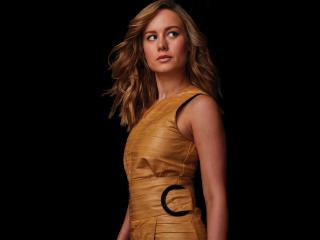 2019 Brie Larson 4K image
