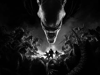 4k Aliens Fireteam Elite wallpaper