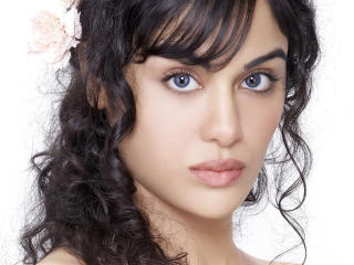 Adah Sharma Blue Eyes  wallpaper