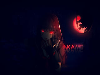 Akame Anime Coolest Art wallpaper