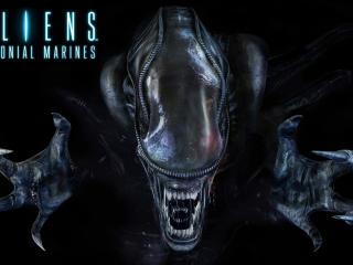 HD Wallpaper | Background Image aliens colonial marines, xenomorph, alien