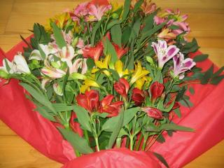 alstroemeria, flowers, bouquet wallpaper