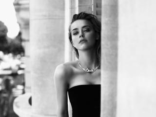 Amber Heard Black Dress Monochrome wallpaper