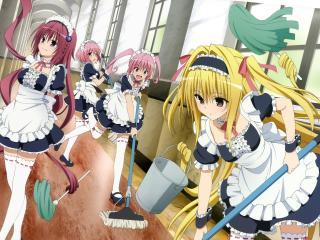 anime, to love ru, to love ru darkness wallpaper