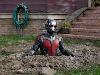 Ant Man 2018 Movie wallpaper