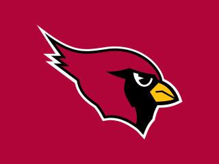 arizona cardinals, sports team, football club wallpaper