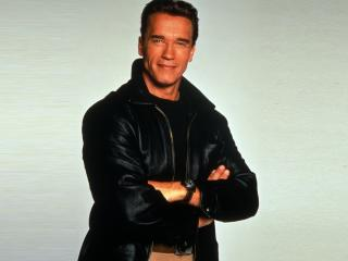 Arnold Schwarzenegger Handsome Pics wallpaper