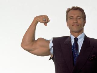 Arnold Schwarzenegger Hd Wallpaper wallpaper