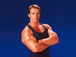 Arnold Schwarzenegger Macho Look Pic wallpaper