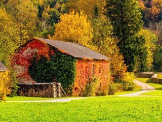 autumn, building, grass wallpaper