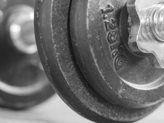 barbell, disk, weightlifter wallpaper