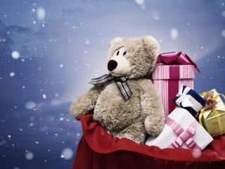 bear, gift, bag wallpaper