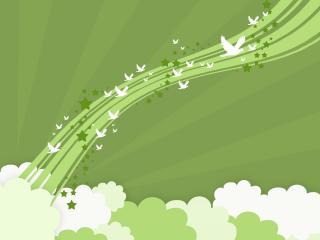 birds, lines, flight wallpaper