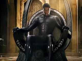 Black Panther Poster wallpaper