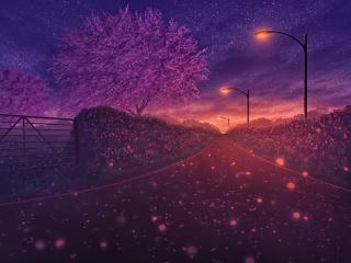 Blossom Artistic Path wallpaper