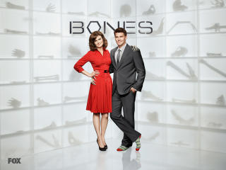 bones, temperance brennan, seeley booth wallpaper