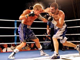 boxing, boxers, couple wallpaper