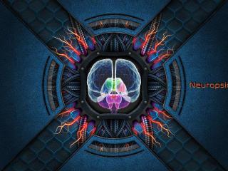 Brain Neuropsychology wallpaper