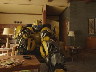 Bumblebee in Bumblebee Movie 2018 wallpaper