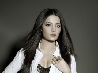Celina Jaitley Hot Pics wallpaper