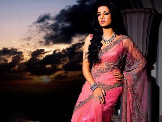 Celina Jaitley In Pink Saree wallpaper