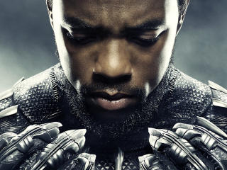 HD Wallpaper | Background Image Chadwick Boseman In Black Panther