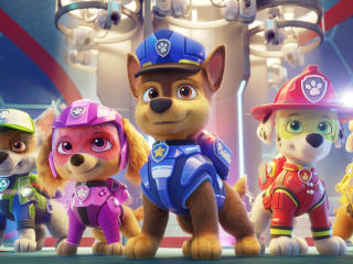 Chase Paw Patrol The Movie wallpaper