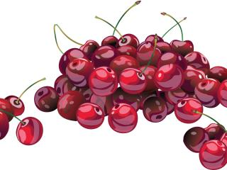 cherry, berry, drawing wallpaper