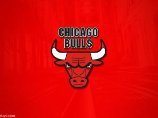Chicago Bulls HD Minimal Logo wallpaper