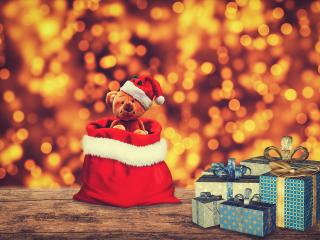 Christmas Gift Teddy Bear wallpaper