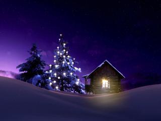 Christmas Lighted Tree Outside Winter Cabin wallpaper