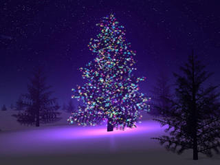 Christmas Tree with Light Decorations wallpaper