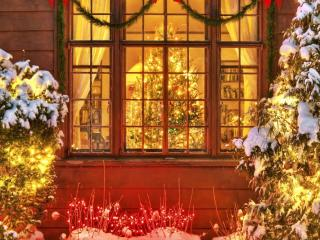 christmas trees, christmas, new year wallpaper