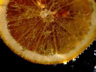HD Wallpaper | Background Image cup, tea, lemon