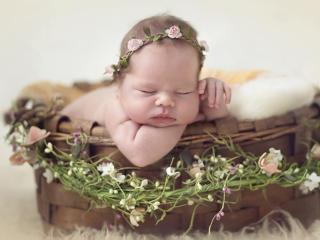 Cute Baby Child Photoshoot Idea wallpaper