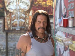 danny trejo, man, actor wallpaper