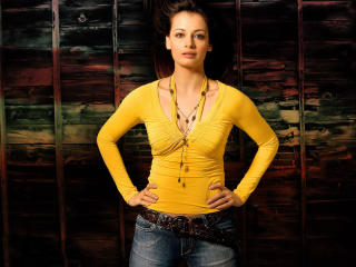 Dia Mirza In Yellow Top HD Wallpapers wallpaper