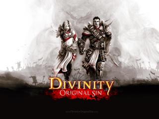 divinity original sin, rpg, fantasy wallpaper