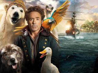 Dolittle Movie 4K 8K wallpaper